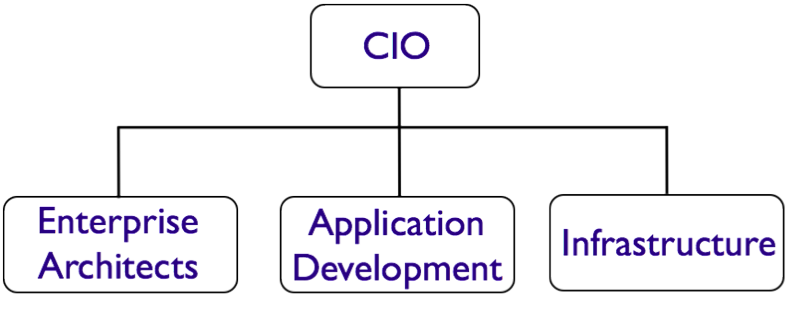 IT_org